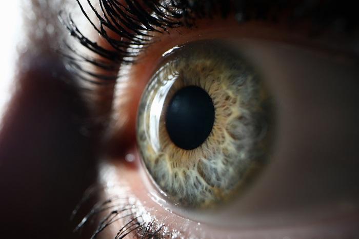 algumas doenças na retina são bem comuns, veja!