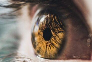 retina dos olhos